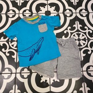 Baby Essentials Whale Shirt & Short Set
